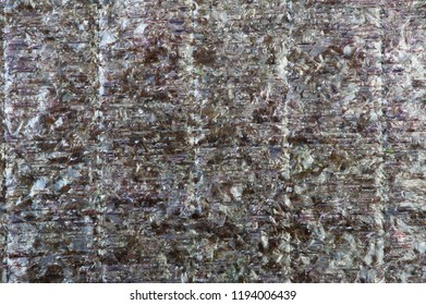 Texture of dry algae for background
