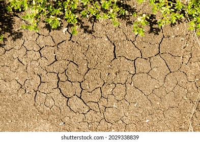 The texture of dry soil on the ground, Top view, Dry cracked ground with grass Background. Texture. Graphic resources.