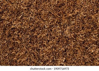 The texture of dry tobacco. High quality dry cut tobacco big leaf