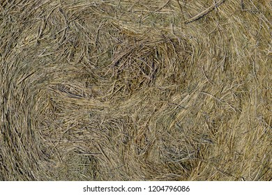 the texture is extruded, twisted in a roll in the hay
