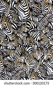 Texture fabric of zebra herd for background