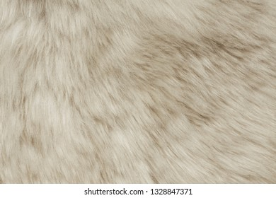 Texture of fur hair background