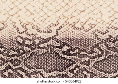 Texture of genuine leather close-up, embossed under the skin  a reptile, beige-brown color, background