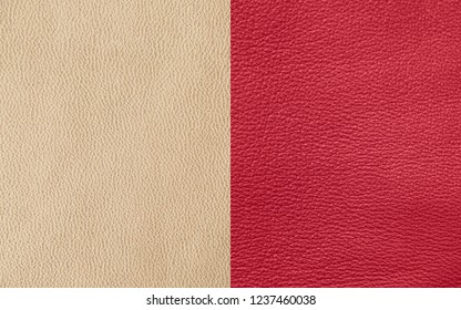 Texture of genuine leather in different colors