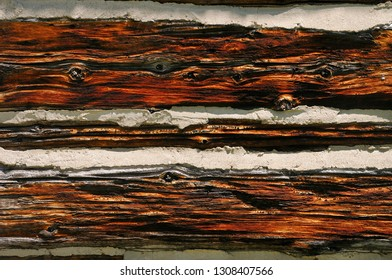 Texture and grain of red wood of a historic log cabin with mortar