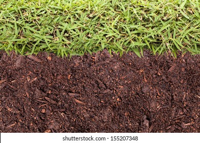 Texture of grass and soil