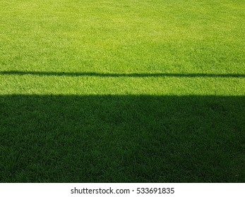 Texture of Green grass field with shadow as background