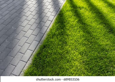 Texture of green grass. Lush grass carpet with gray pavement tiles and tree shadows.