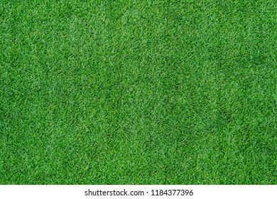 Texture of green grass top view green lawn