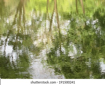 Texture of green shades of the reflections of trees in the water of forest lake