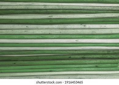 the texture of green wooden bamboo branches in a horizontal form. natural wood green background