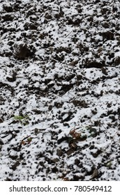 The texture of the ground, covered with a thin layer of snow. The soil of the garden in winter. The dug ground close up
