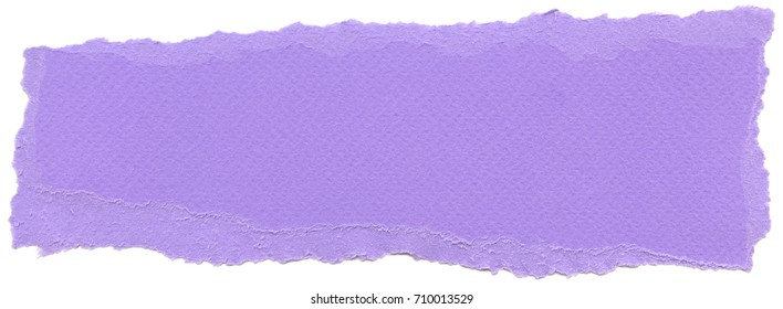 Texture of Lavender fiber paper with torn edges. Isolated on white background.
