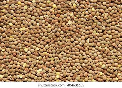 The texture of lentil