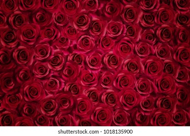 Texture made of pink roses. Valentine, wedding background.