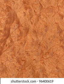 Texture of madrone's root (high-detailed wood texture series)