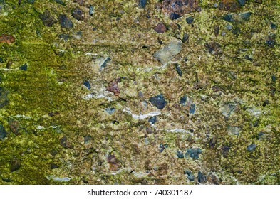 Texture of a mossy sandy concrete wall with a blotches of dark blue gravel stones.