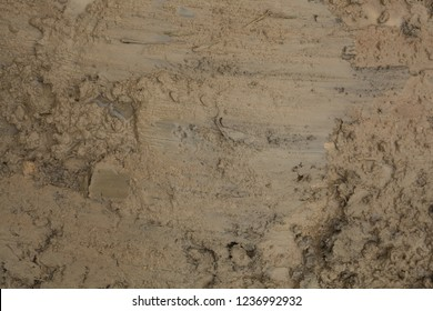The texture of the mud or wet soil