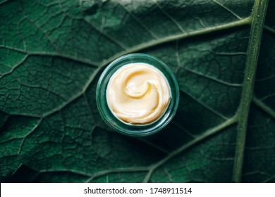 Texture of natural cosmetic cream for body care on a green leaf. Natural organic cosmetics from plants for skin care