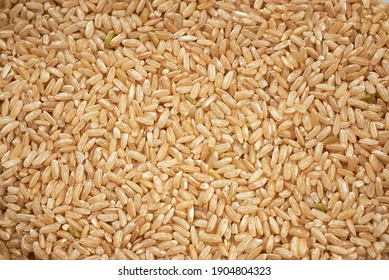 the texture of natural rice grains. healthy eating. pattern, close-up, macro