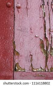 Texture of an old pink door