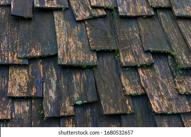 The texture of the old shingle roof of a rural house was shot in closeup on a rainy day.