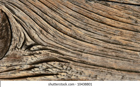 texture old wood lines close-up material tree