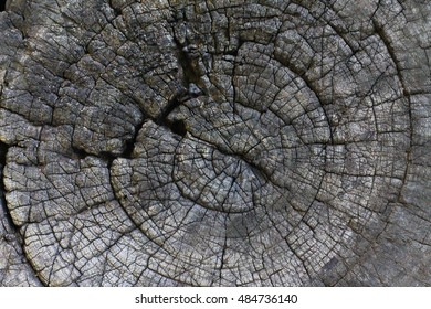 Texture of old wood structure
