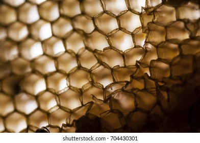 Texture and pattern of honeycomb, Abstract background