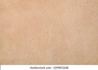 The texture of the pigskin.Background of pigskin from the fat. stock photo