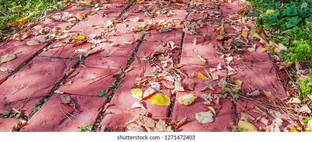Texture of pink patterned paving tiles on ground of street. Perspective view. Cement brick squared stone floor background. Concrete paving slab flagstone. Sidewalk pavement pattern.