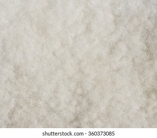 The texture of real natural wool from white sheep for background.