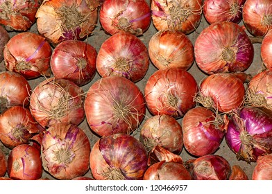 Texture of red onions drying on a row
