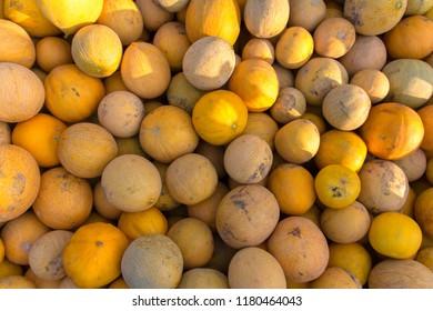 texture of ripe yellow melon.
