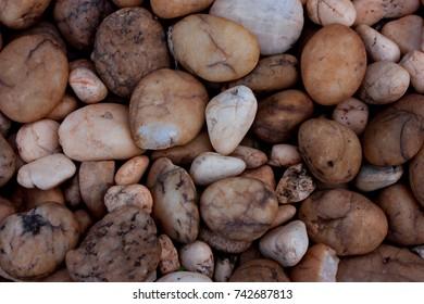 texture rocks on the ground