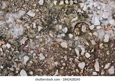 texture of rough stone. textured background for design