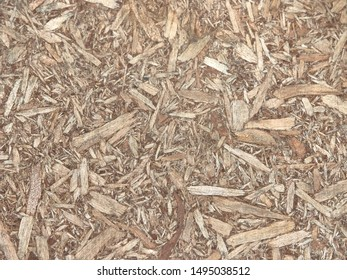 Texture of sawdust. big and small shavings