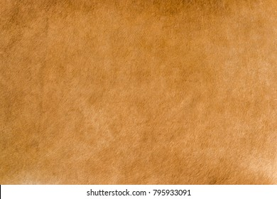 Texture, shabby aged cow leather, suede.