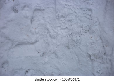 texture of trampled snow