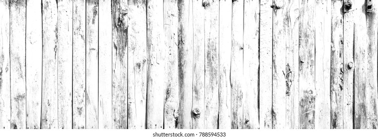 Texture of white eucalyptus wood Sort by length Or solid wood flooring with a natural wood surface background.