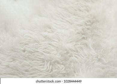 Texture of white fur,Luxury background