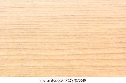 texture of wood use as natural background