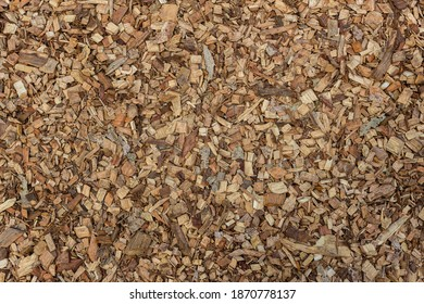 Texture of wooden sawdust of large fraction. A bunch of wood chip. Sawdust or wood dust texture background. Natural floor sensory path, barefoot on sawdust.