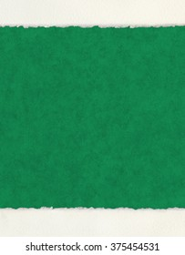 A textured green paper background with deckled watercolor paper borders.