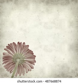 textured old paper background with bright pink gerbera flower