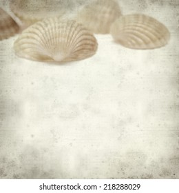 textured old paper background with cockle shells