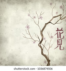 textured old paper background with Japanese calligraphic writing for flower viewing, and watercolor spring flowers