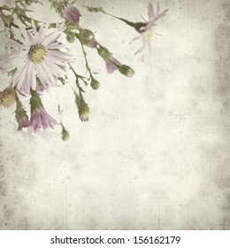 textured old paper background with perinneal asters