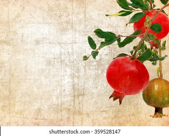 Textured old paper background with pomegranate fruit