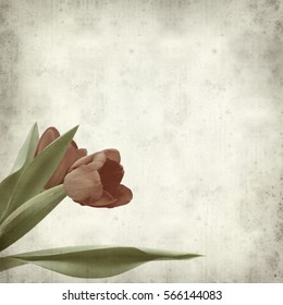 textured old paper background with red and yellow tulip